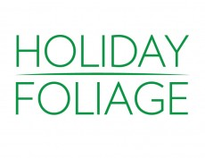 Holiday Foliage